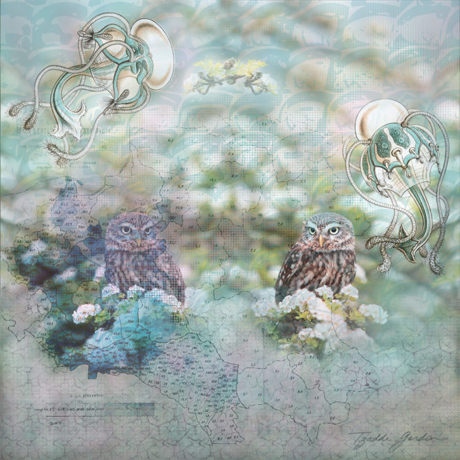surreal collage of owls, forest, water creatures